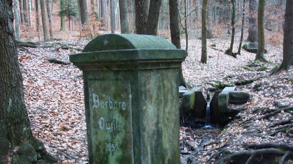 Groß-Skaler Felsenstadt - Barbara-Quelle  (Foto: Štěpánka Budková)
