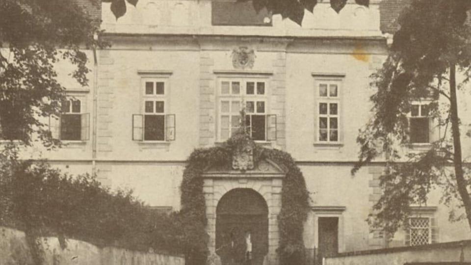 Institutum Beatae Mariae Virginis