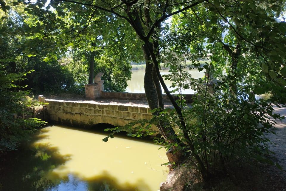 Brückchen am Teich Dolanský  (Foto: Bohumil Šimčík)